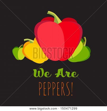Sweet multicolored peppers vector set. Fresh raw vegetables concept. Red, yellow, green flat cartoon peppers, isolated on black. Big fresh peppers with funny text.