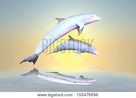 Cheerful game the family of dolphins against a background of the sunset. 3D illustration