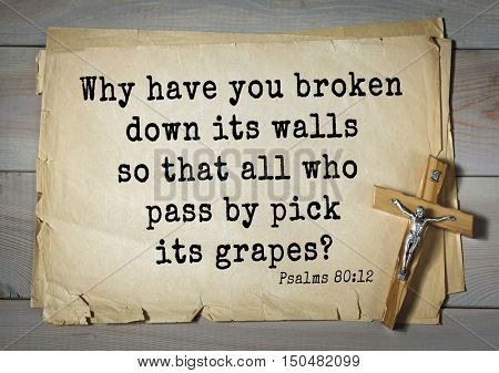 TOP-1000.  Bible verses from Psalms.Why have you broken down its walls so that all who pass by pick its grapes?