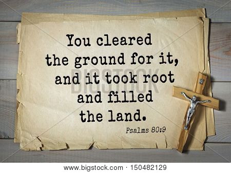TOP-1000.  Bible verses from Psalms.You cleared the ground for it, and it took root and filled the land.