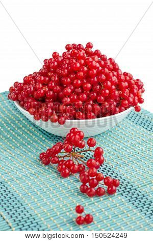 Red Viburnum Berries In White Plate With Dropped-out Cluster