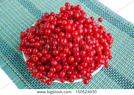 Red Berries Of Guelder Rose In White Plate On Blue