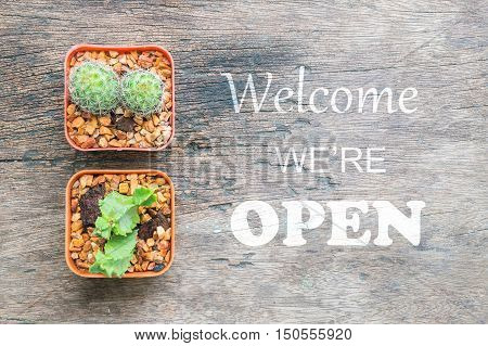 Closeup group of cactus in plastic brown pot on wood desk textured background in top view with welcome we're open sentence for people know shop status