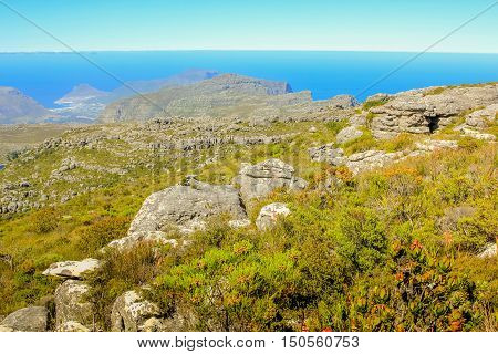 Landscape of plateau in Table Mountain National Park. Cape Town, Western Cape, South Africa.