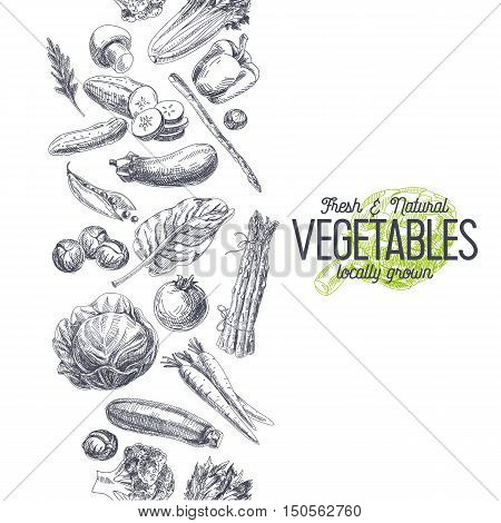 Vector hand drawn farm market Illustration. Vintage style. Retro organic food background. Locally grown sketch