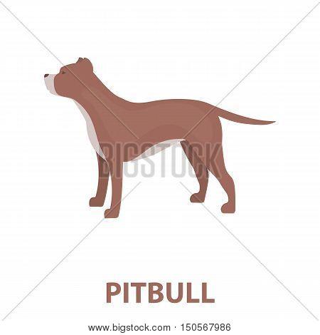 Pitbull rastr illustration icon in cartoon design