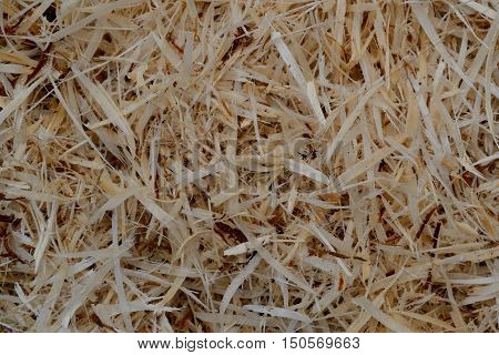 Pattern from waste wood chips - background