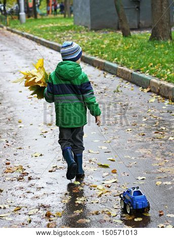 Autumn walks in the fresh air. The boy in the green jacket boots and hat walking along the road covered with leaves pulls a toy car and is hand assembled bouquet of yellow leaves.