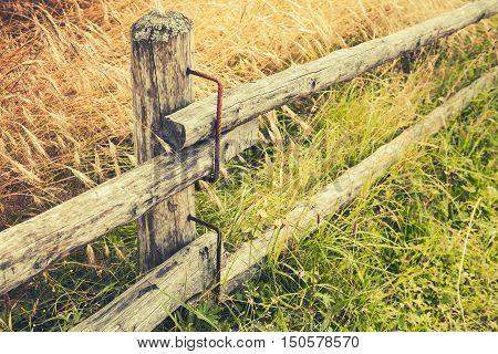 Rural Wooden Fence Along Field Of Rye