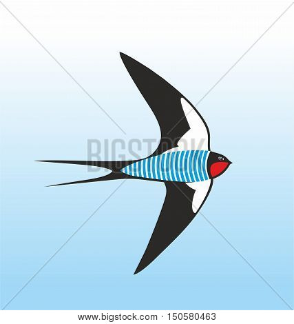 Swallow dressed up in sailor s frock