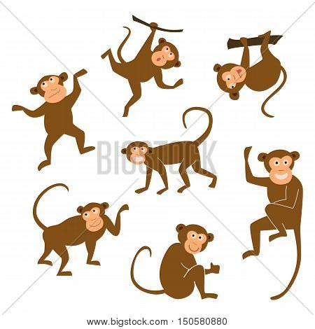 Chinese New Year 2016 monkeys decoration icon. Monkey in east style. Happy ape collection. Chinese Monkey graphic illustration. Brown chimpanzee on white isolated background.