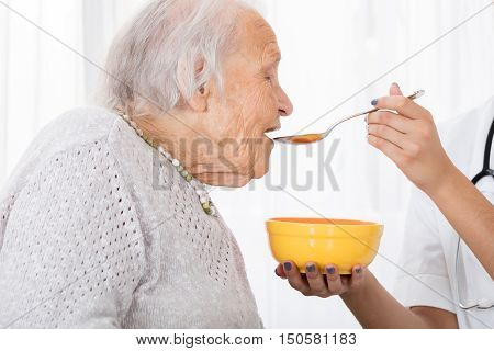 Close-up Of Doctor's Hand Feeding Soup To Patient In Hospital