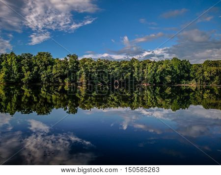 a forest treeline reflection in catawba river