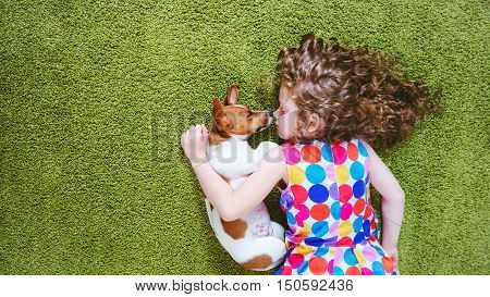 ute child with puppy jack russell sleeping on the green carpet. High top view.