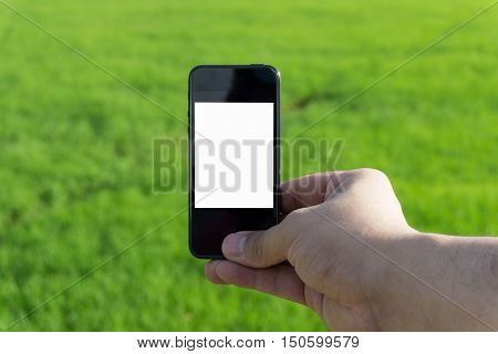 Smartphone blank screen and green abstract background.