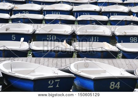 Many Blue & White dinghy boats mooring on a lake