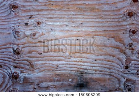 old wood texture with natural pattern eye wood texture