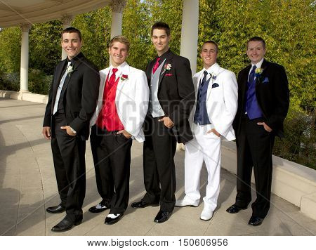 Group of Teenage Boys at the Prom with their tuxedos posing