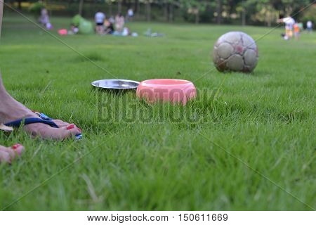 A day at the park with mistress, bowls and the balloon