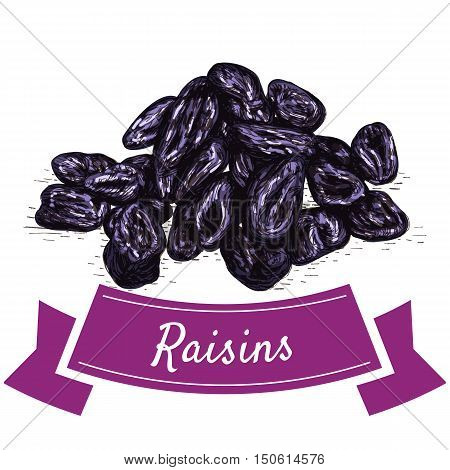 Raisins colorful illustration. Vector illustration of raisins.