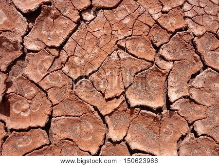 dry mud background texture. Global Warming concept