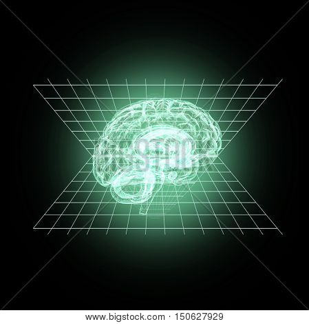 Model of a human brain in 3D measurement. 3D illustration