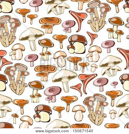 Seamless pattern with hand drawn edible mushrooms - vector illustration