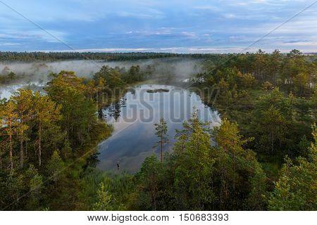 Viru Bog in Lahemaa National Park, Estonia.