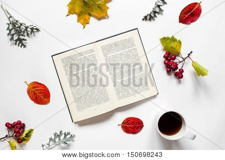 Workspace. Composition of text book, a cup of tea, autumn leave, red berries of haw on white background.