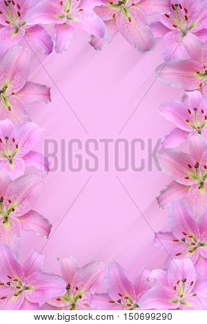 blurred background with pink lily frame and copy space