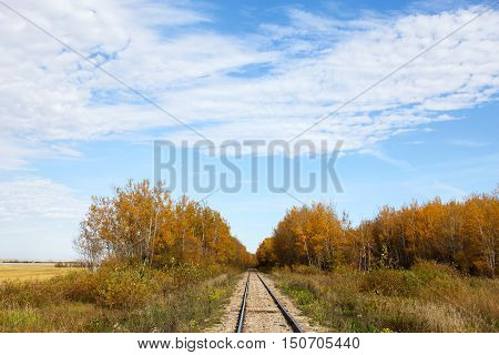 Railway track between forest of autumn colored trees in rural countryside landscape