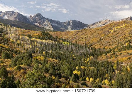 Autumn colors of the San Juan Mountains in Southwest Colorado