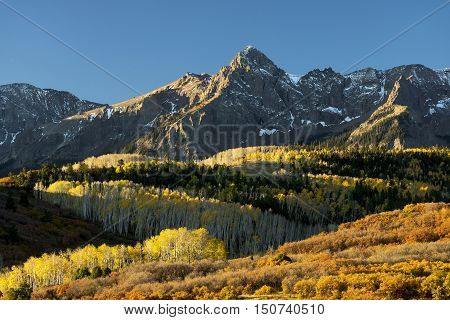 Early morning autumn colors at Mt. Sneffels in the San Juan Mountains of Southwest Colorado