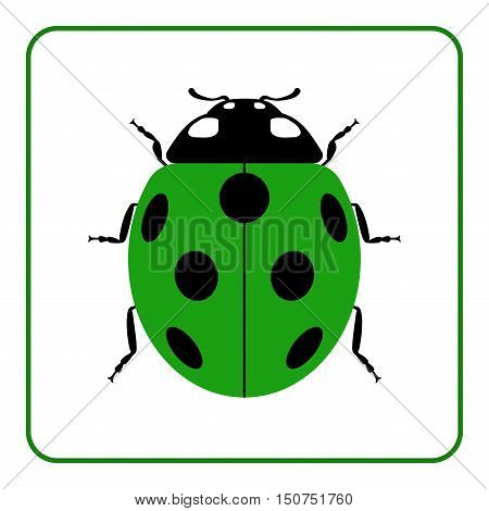 Ladybug small icon. Green lady bug sign isolated on white background. Wildlife animal design. Cute colorful ladybird. Insect cartoon beetle. Symbol of nature spring or summer. Vector illustration