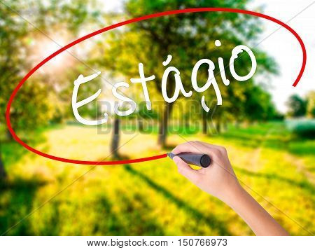 Woman Hand Writing Est�¡gio (internship In Portuguese)  With A Marker Over Transparent Board