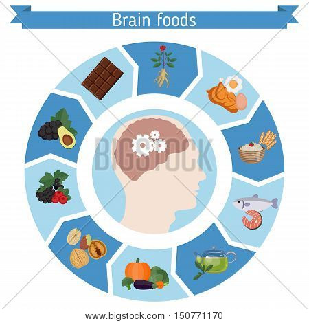 Infographics of food helpful for healthy brain