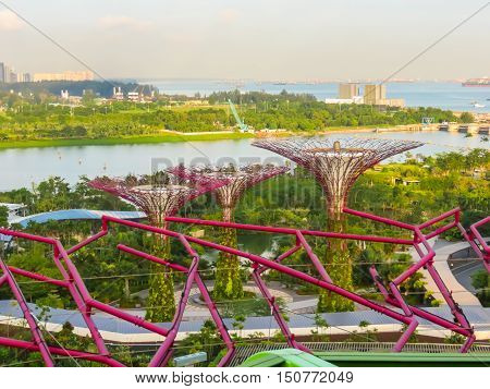 SINGAPORE, REPUBLIC OF SINGAPORE - JANUARY 09, 2014: Singapore city skyline and Supertree Grove at sunset. View from Supertree rooftop