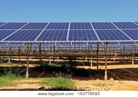 Large Scale Solar PV Power Plant front view
