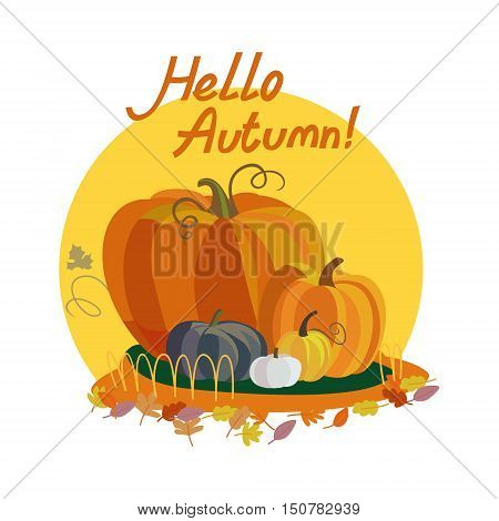 Colorful illustration of seasons theme in vector. Hello autumn concept. Modern vintage colors, flat design. Pumpkin illustration with lettering. For advetrising, bakery, autumn banners, post-card