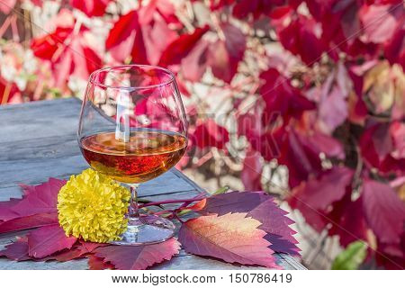 Snifter of brandy with flower on the old table in autumn garden's