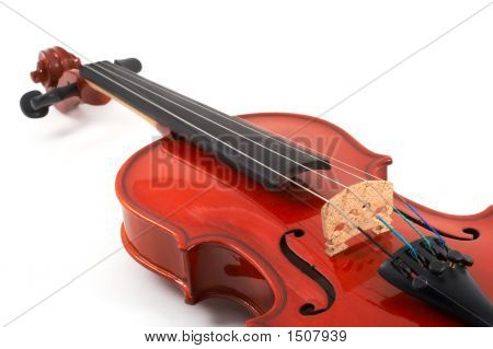 Violin Angled Closeup View On White Background