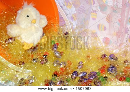 Easter Chick20