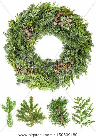 Christmas wreath from fir pine and spruce and twigs with cones isolated on white background