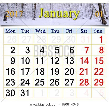 beautiful calendar for January 2017 with snowy birch grove