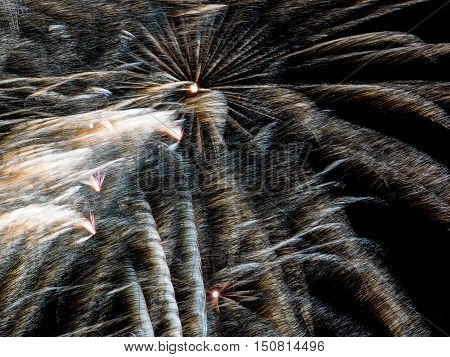 Wind blown gold and white. Spectacular fireworks  at a national fireworks championship  at Belvoir Castle. Three of the UK best firework companies compete with a 10-minute firework display.