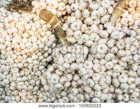 Group of garlic for sale on market.