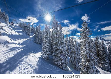 Trees covered by fresh snow in Austria Alps from Kitzbuehel ski resort - one of the best ski resort in the workd with 54 cable cars 170 km prepared skiing slopes and place of famous hahnenkamm races.