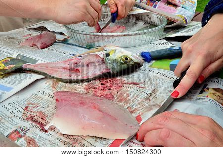 Sport-recreation-leisure-fishing-fish-cleaning-food-cooking