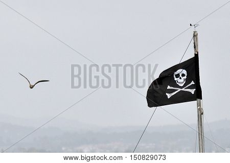 Jolly Roger - Flag of a Pirate skull and crossbones.