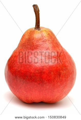 Red pear isolated on white background. Fruit. Red.